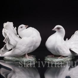 Парные фарфоровые статуэтки птиц Голубь и голубка, Rosenthal, Германия, 1950 гг.